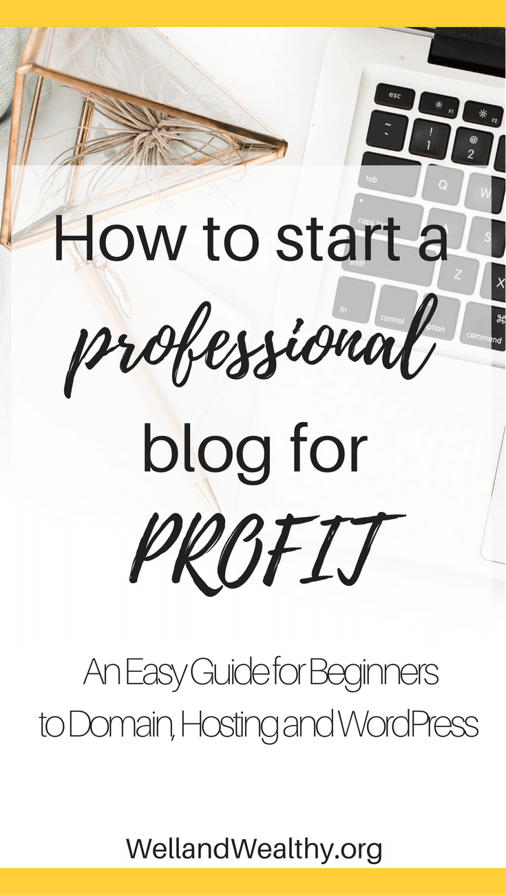 How to start a professional blog for profit: Domain, Hosting and WordPress Guide