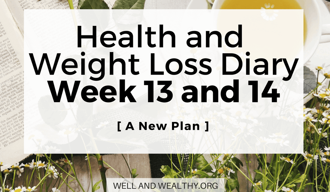 A New Plan  (Week 13 and 14 of Health and Weight Loss Diary)